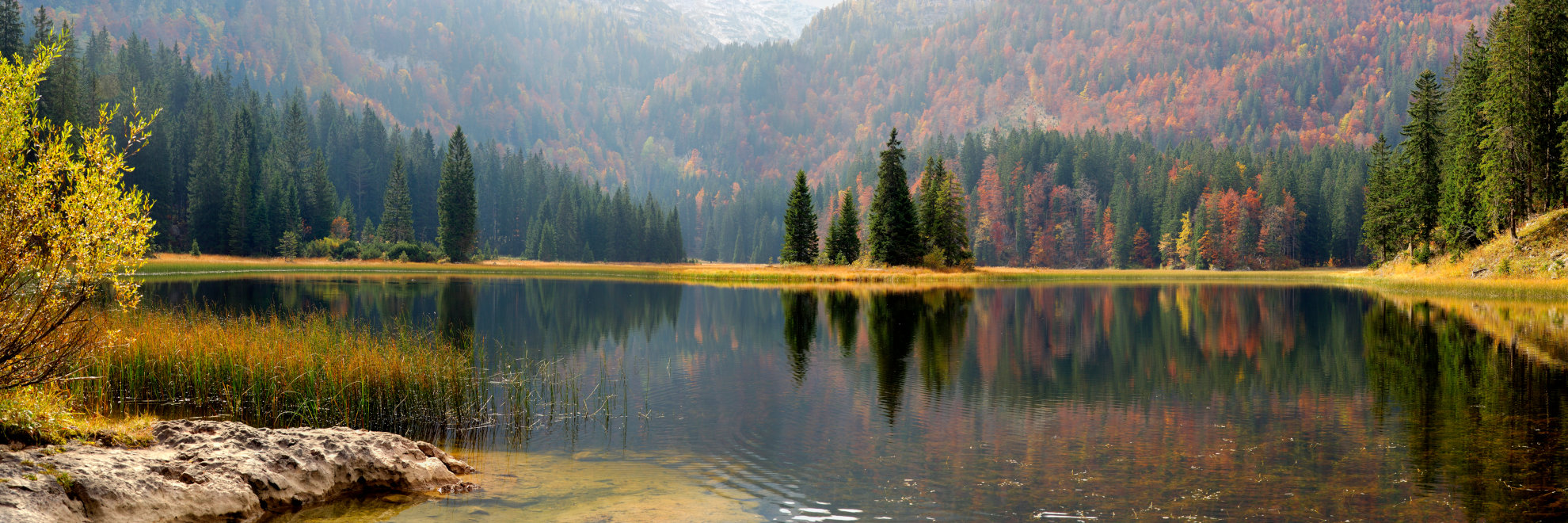 Aufnahme von Obersee auf niederer Unternehmensbegleitung - Kontakt